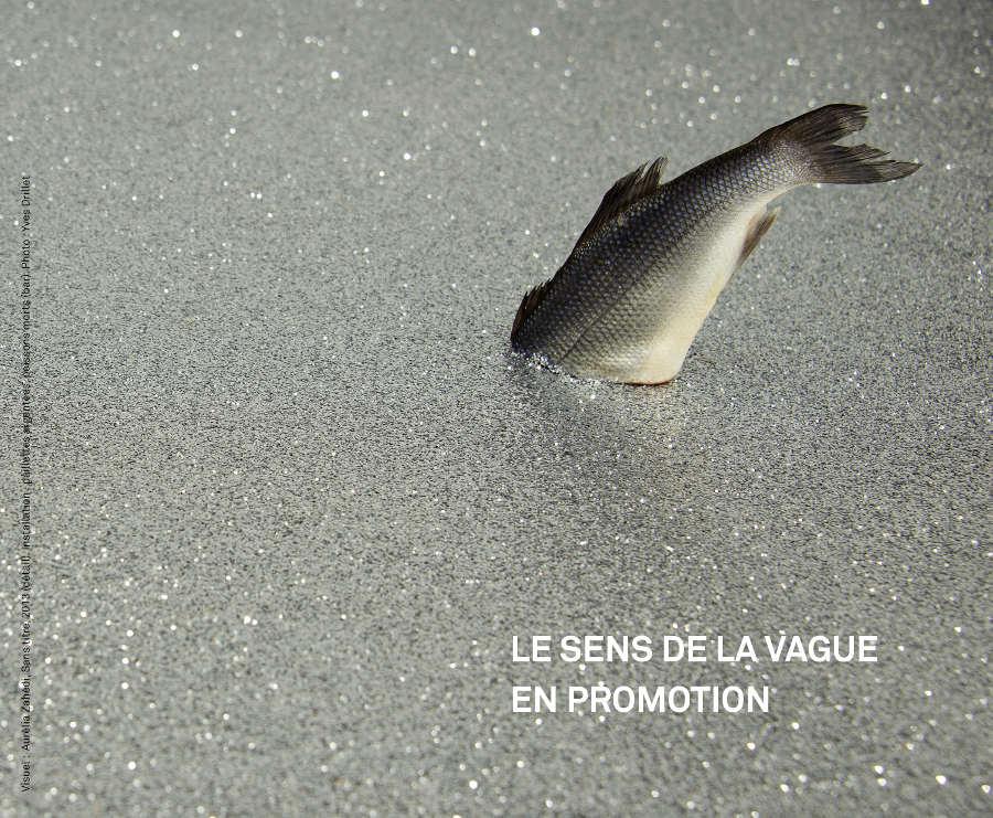 bd-lesensdelavague-enpromotion-1