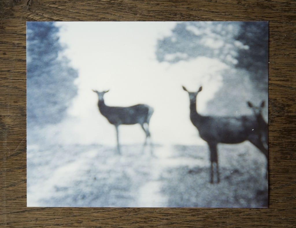 """Neven ALLANIC, """"La première impression"""", 1988/2010 Photographie, impression numérique sous diassec,  30x40 cm , éd.1/5, Intervention de Neven Allanic dans le showroom projet de Loft."""