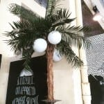 Les Visiteurs du Soir 2015 - la Zonmé