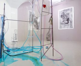 Grégory Cuquel, transhumance de peaux mortes_ suc et salive, 2016. Vue de l'exposition à IN EXTENSO, Clermont-Ferrand. Photo : G. Cuquel