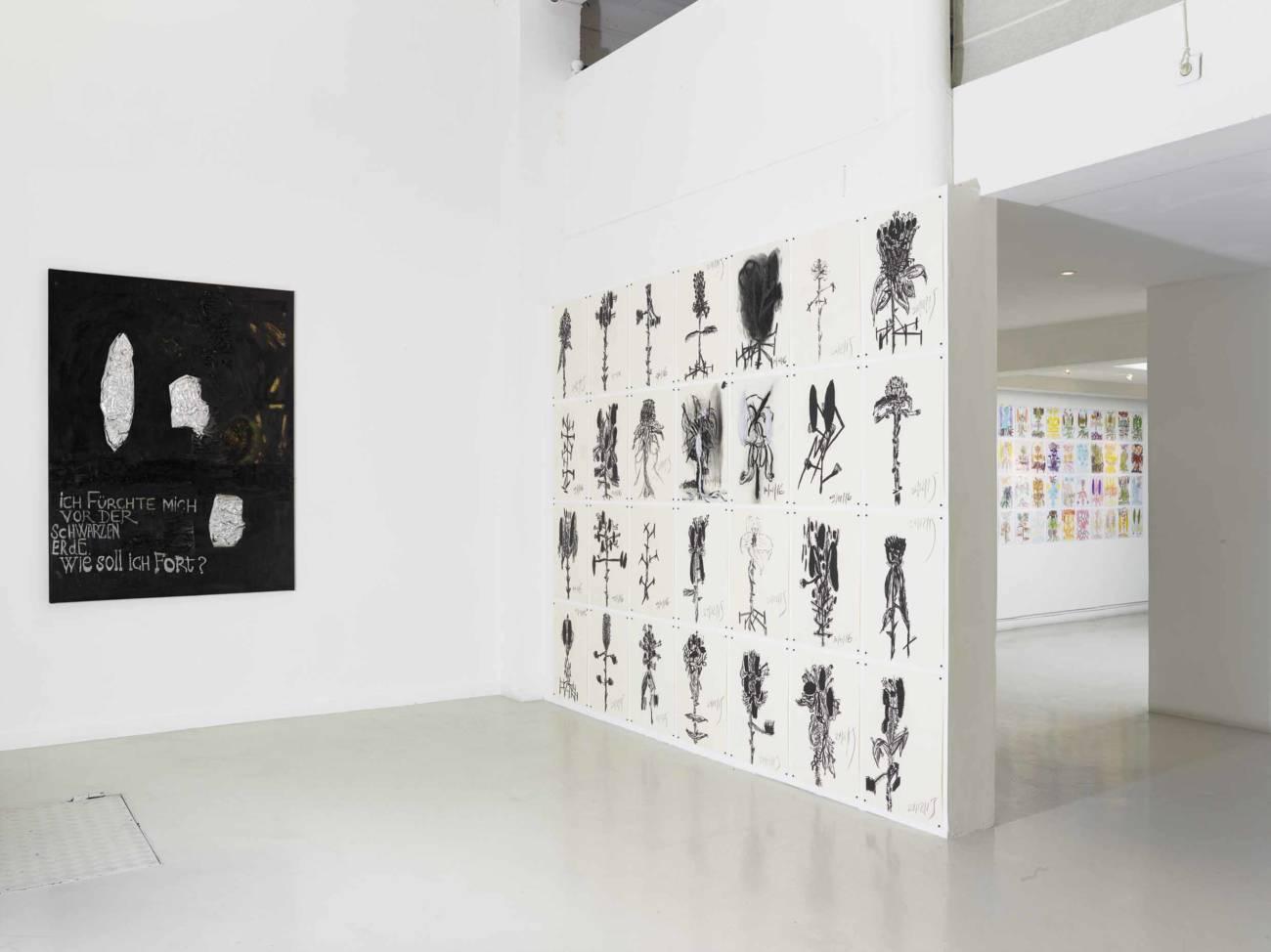 Exposition, Yosef Joseph Dadoune, Des Racines, 2018 © François Fernandez