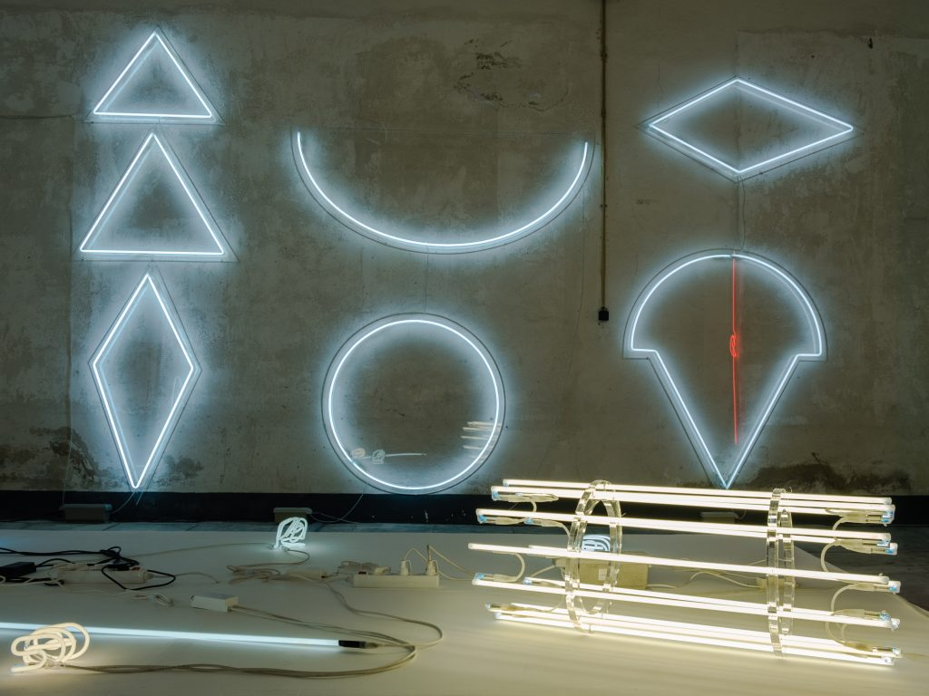 Exposition Kleber Matheus – Espace à vendre © Evelyne Creusot