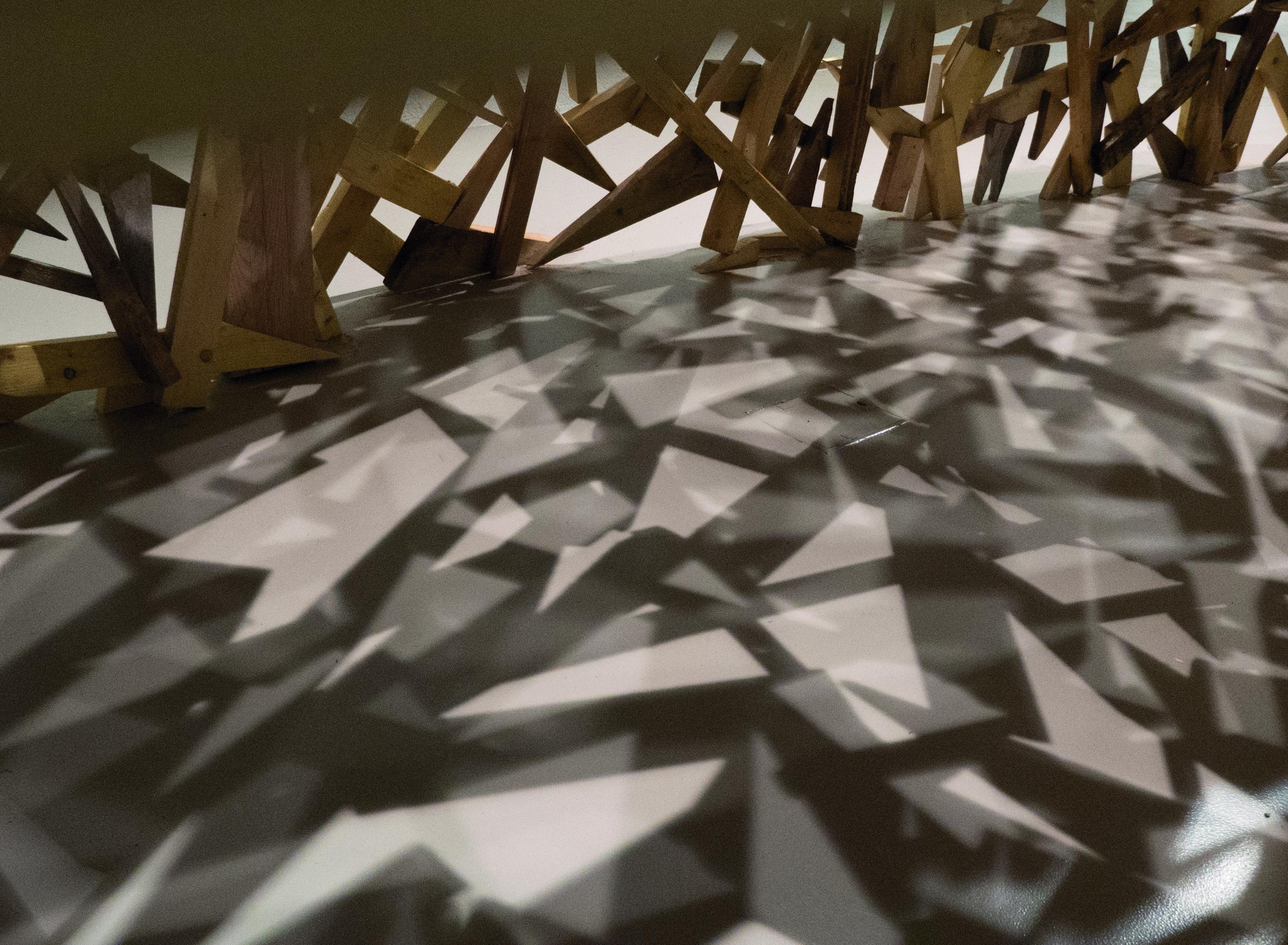 Habitat potentiel pour une artiste, Exposition de Tatiana Wolska