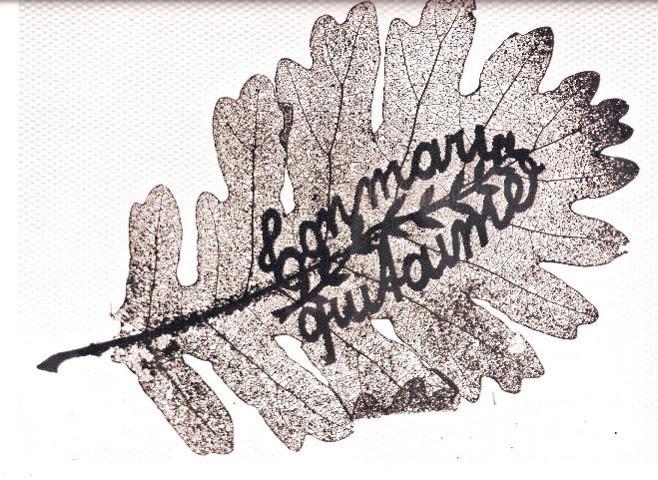 Des fleurs de tout poil / chapitre 1 par Emma Picard