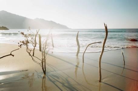La Sirène de 165 mètres et autres histoires