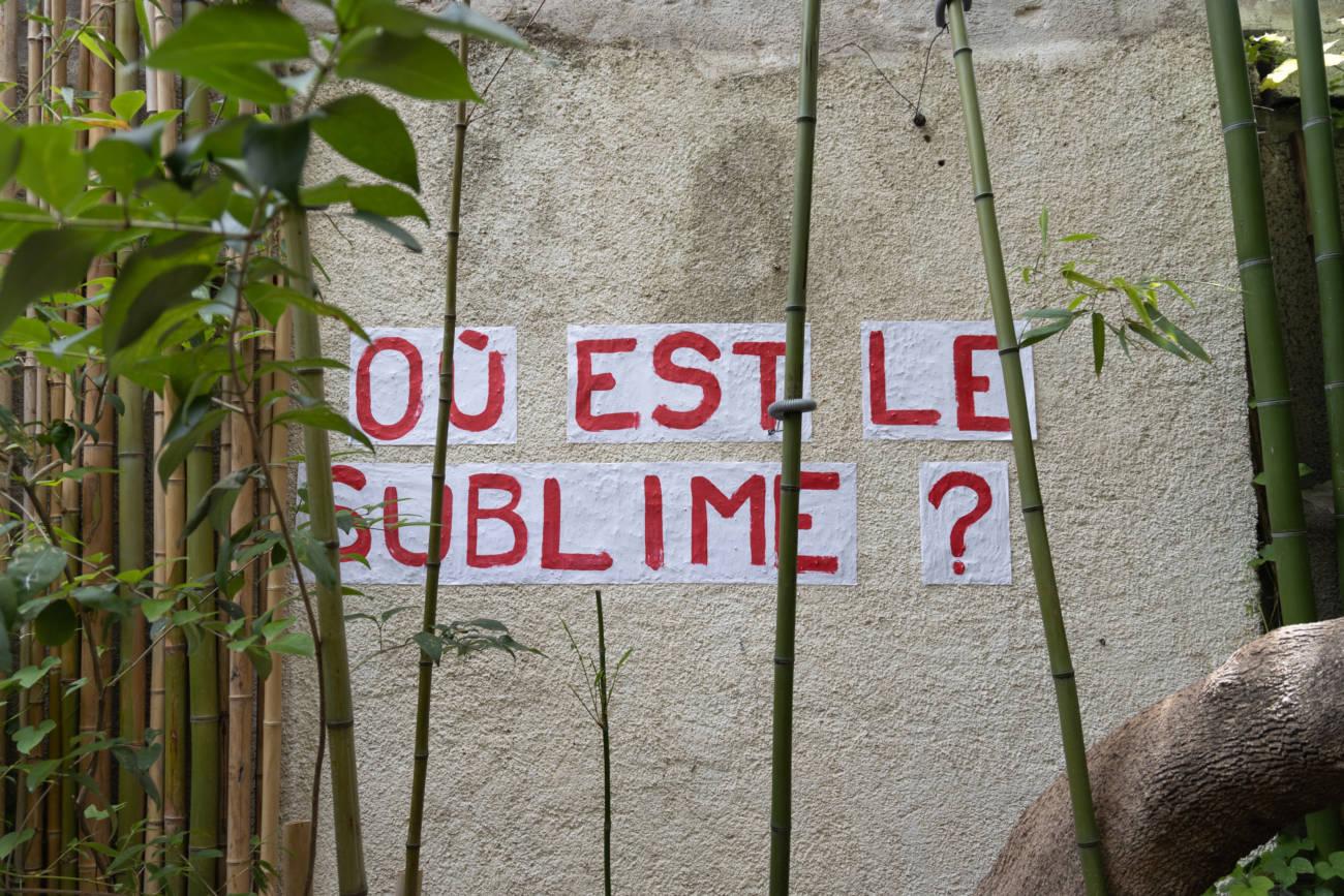 Œuvre d'Aimée Fleury, Exposition
